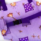 Детские прыгунки-качели 2 в 1 Baby Jamp, на экспандерном шнуре, цвета МИКС - фото 958204
