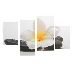 """Картина модульная на подрамнике """"Белый цветок у камней""""  2-30х45; 1-29,5х69; 1-34х69"""