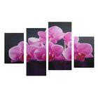 """Модульная картина на подрамнике """"Розовые орхидеи"""", 2 — 30×45, 1 — 29,5×69, 1 — 34×69"""