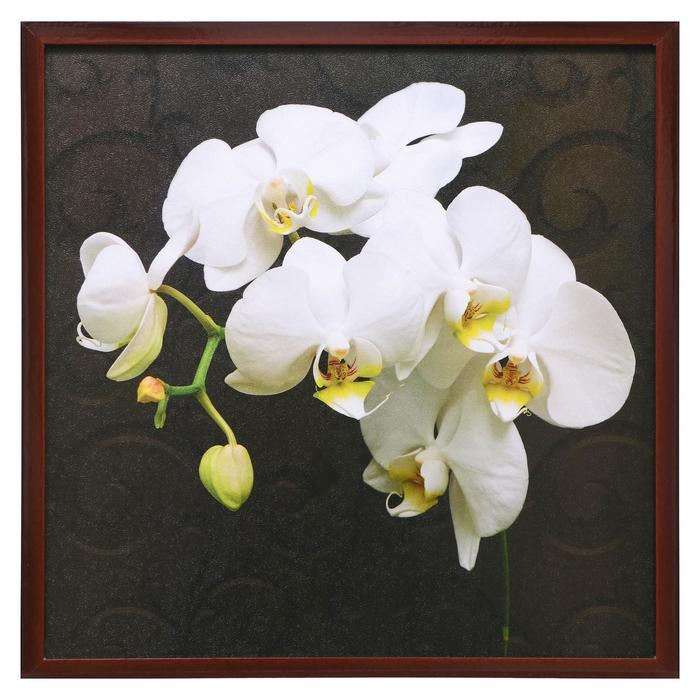"Картина ""Белая орхидея"" рама микс"