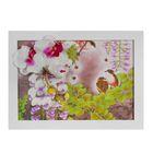 """Картина-гербарий """"Орхидеи"""""""