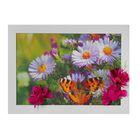 """Картина-гербарий """"Цветы с бабочкой"""""""