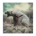 """Часы настенные, серия: Животный мир, на холсте """"Белый медведь"""", 40х40 см"""