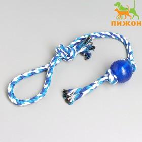 Игрушка-дразнилка для собак с мячиком, 95 г, до 54 см, микс цветов
