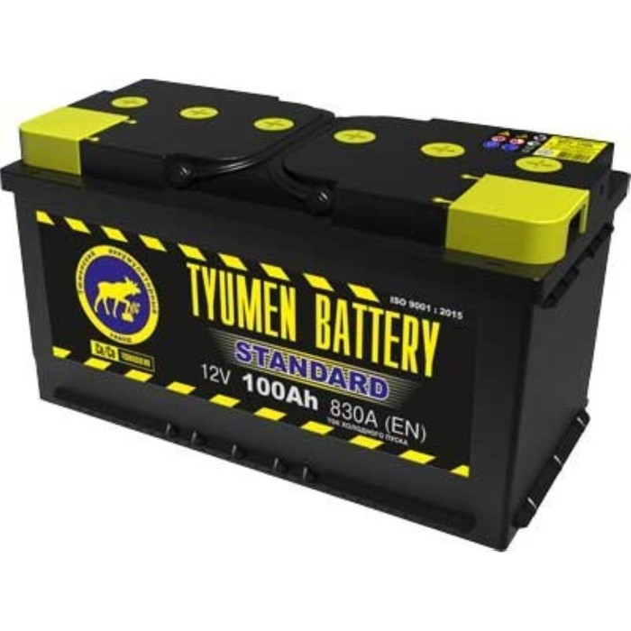 Аккумуляторная батарея Тюмень 100 Ач 6СТ-100L, Standard