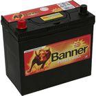 Аккумуляторная батарея Banner 45 Ач Power Bull P45 24