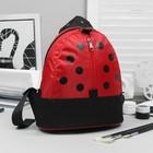 Рюкзак детский на молнии, 1 отдел, наружный карман, красный, чёрный