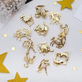 Брошь 'Ассорти' гороскоп, цвет белый в золоте Ош
