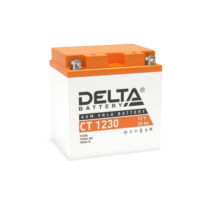 Аккумуляторная батарея Delta СТ1230 (YTX30L, YТX30L-BS, YB30L-B)12V, 30 Ач обратная(- +)