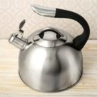 """Чайник """"Стиль"""", макс. объем 2,5 л, со свистком, фиксированная ручка, капсулированное трехслойное дно"""