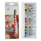 Краски акриловые, 12 цветов, в пластикковой тубе 9 мл, в картонной коробке
