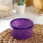 The food container 300 ml round
