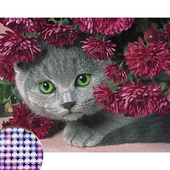 Алмазная вышивка с частичным заполнением «Котёнок», 40 х 30 см. Набор для творчества
