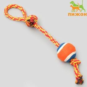 Игрушка тренировочная канатная с мячом, до 125 г, до 45 см, микс цветов