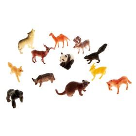 Набор животных «Удивительный мир», 12 предметов