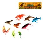 Набор животных «Подводные обитатели», 6 животных, аксессуары