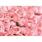 Фотообои К-116 «Романтика» (8 листов), 280 × 200 см
