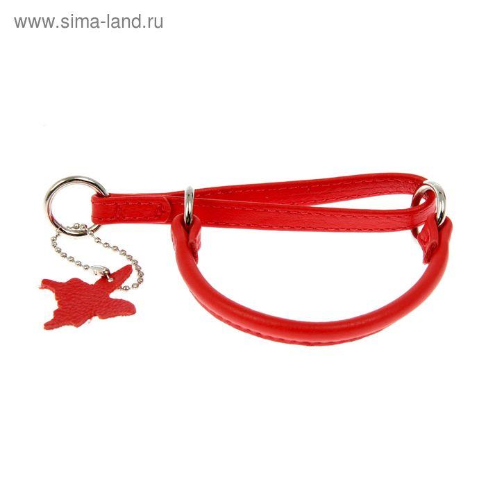 Ошейник-удавка CoLLaR Glomour, 25 х 0,6 см, красный