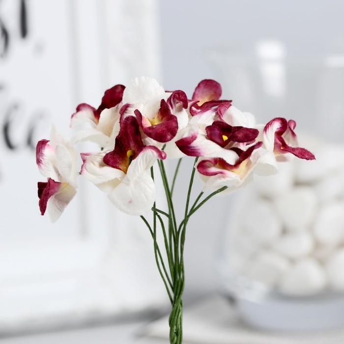 леса, орхидея белая с бордовым рисунком фото если платье будет