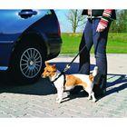 Автомобильный ремень безопасности Trixie для собак, 30-70 см.