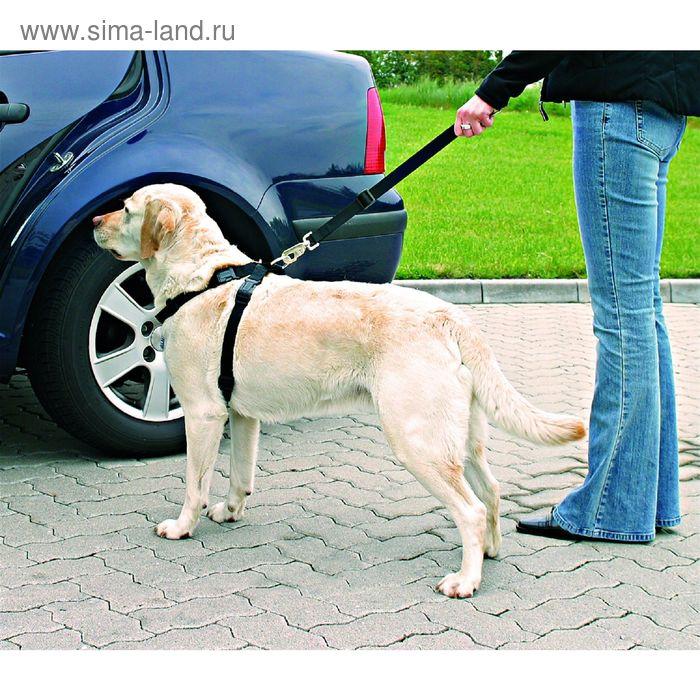 Автомобильный ремень безопасности Trixie для кошки, 20-50 см.