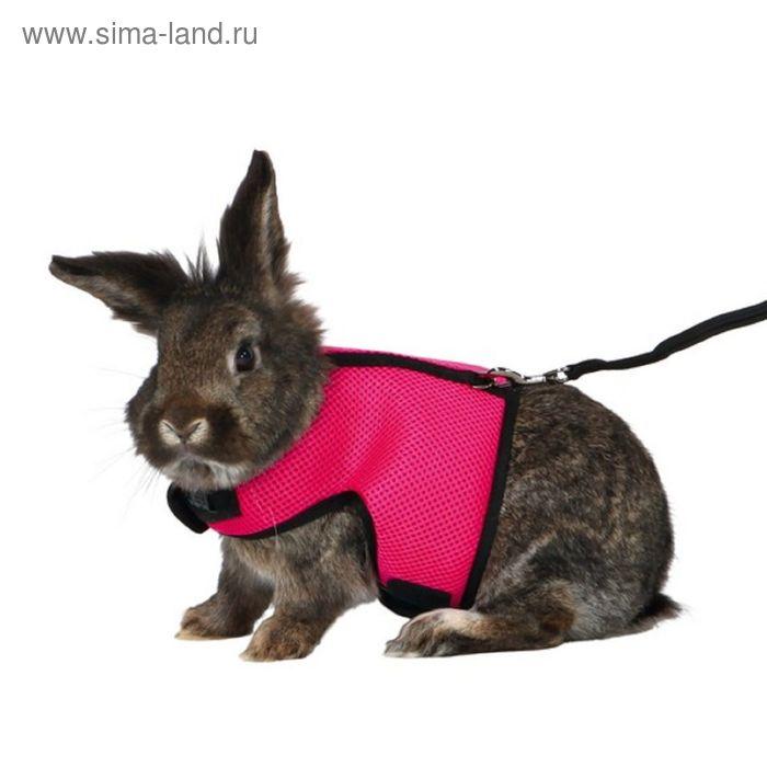 Шлейка Trixie с поводком для грызунов (кроликов), 25-40 см / 1.20 м, нейлон