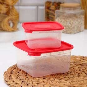 Набор пищевых контейнеров «Каскад», 2 шт: 460 мл; 1 л, цвет МИКС
