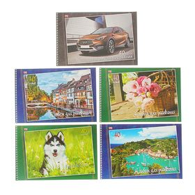 Альбом для рисования А4, 40 листов на гребне «Мир вокруг нас», обложка мелованный картон, блок 100 г/м2, перфорация на отрыв, МИКС