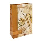 """Пакет подарочный """"История путешествий"""" 26,5 х 16,5 х 7 см"""