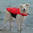 Спасательный жилет Trixie для собак, S: 36 см, (42-66см./20 кг.), красный/черный