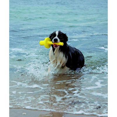 Апорт Trixie Mot-Aqua для игры на воде, 29 см, пенополиуретан