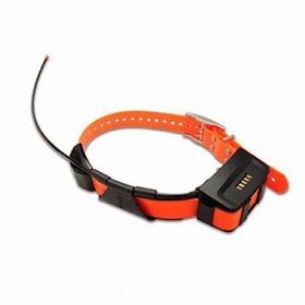 Датчик-ошейник Garmin T5 Collar Rus для Astro