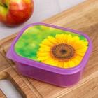 "The lunch box ""Sunflower"", 500 ml"