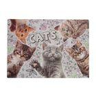"""Накладка на стол дизайнерская """"Кошки"""" А3+, 46 х 33 см"""