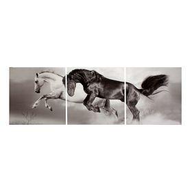 """Картина модульная на подрамнике """"Скакуны. Черный, белый."""" 3шт-50х50 см; 50*150 см"""