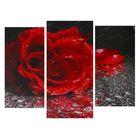 "Модульная картина на подрамнике ""Роза под дождём"", 2 шт. — 25×50, 1 шт. — 30×60, 60×80 см"