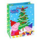 "Пакет подарочный ""Пеппа зимой"", 23 х 18 х 10 см, Peppa Pig"
