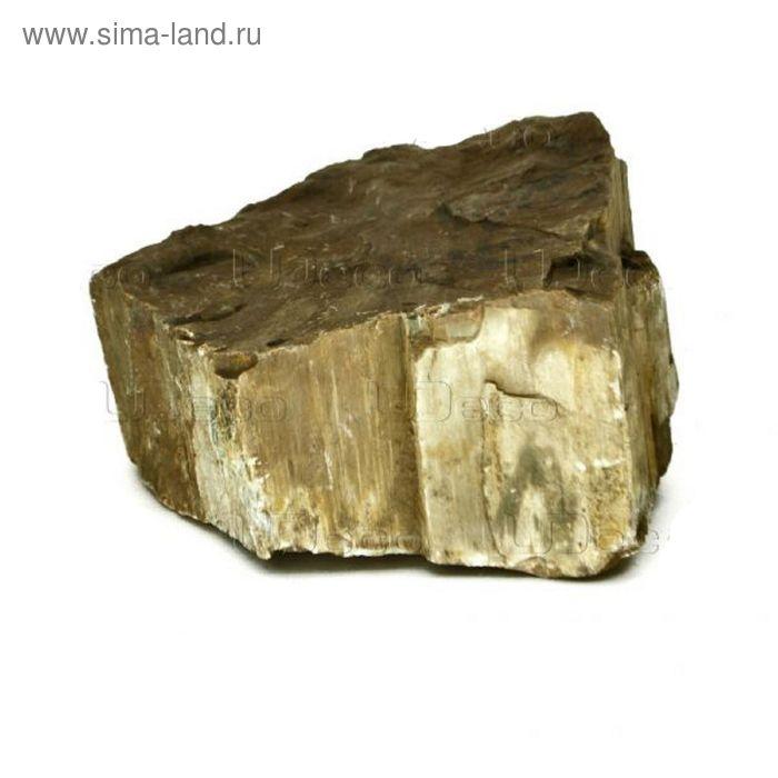 """Камень натур.""""Окаменелое дерево"""" UDeco Fossilized Wood, 1шт, размер 20-30см, m=4-6кг"""
