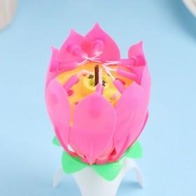 """Свеча для торта музыкальная """"Тюльпан"""", розовая, 12×5 см"""