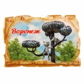 Магнит в форме свитка «Воронеж» Ош