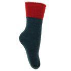 Носки детские махровые с отворотом, размер 18, цвет МИКС ДЗ-9209