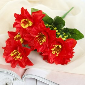 "Bouquet ""Poinsettias Holly"" mix"