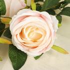 """Цветы искусственные """"Роза"""" три бутона, светло-розовая - фото 1692601"""