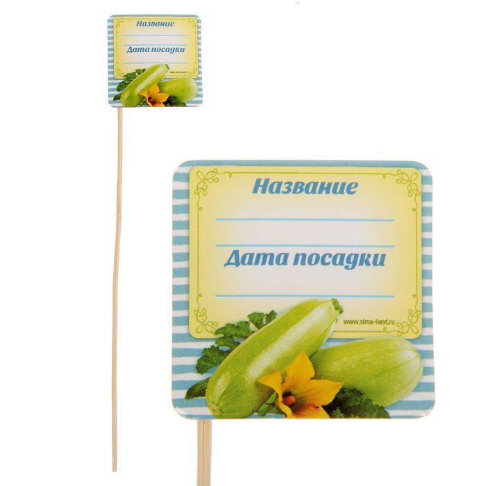 """Табличка для растений """"Кабачок"""""""