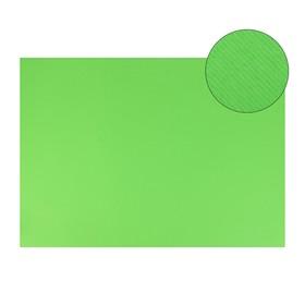 Картон цветной, двусторонний: текстурный/гладкий, 700 х 500 мм, Sadipal Fabriano Elle Erre, 220 г/м, зеленый яркий Verde Pisell
