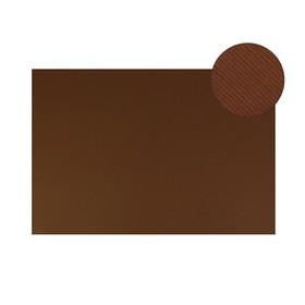Картон цветной, двусторонний: текстурный/гладкий, 700 х 500 мм, Sadipal Fabriano Elle Erre, 220 г/м, коричневый Marrone