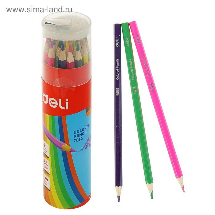 Карандаши 24 цвета в пластиковом тубусе с точилкой МИКС DELI