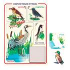 Рамка-вкладыш «Птицы перелётные»