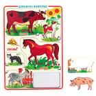 Рамка-вкладыш «Домашние животные»