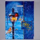 """Пакет """"Зимний вечер"""", полиэтиленовый с вырубной ручкой, 47х38 см, 60 мкм"""